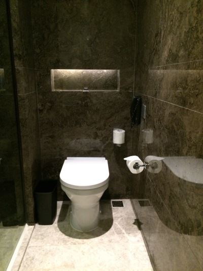 royal-plaza-hotel-toilet