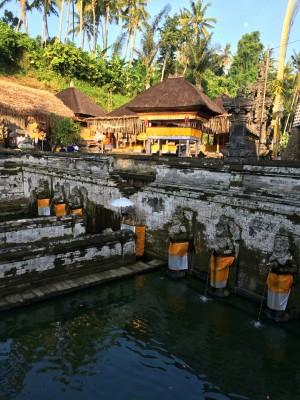 Goa Gajah Pond 2