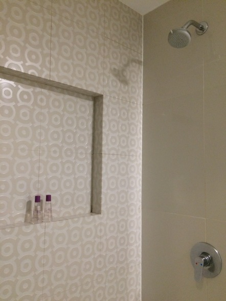 Quest Hotel Shower