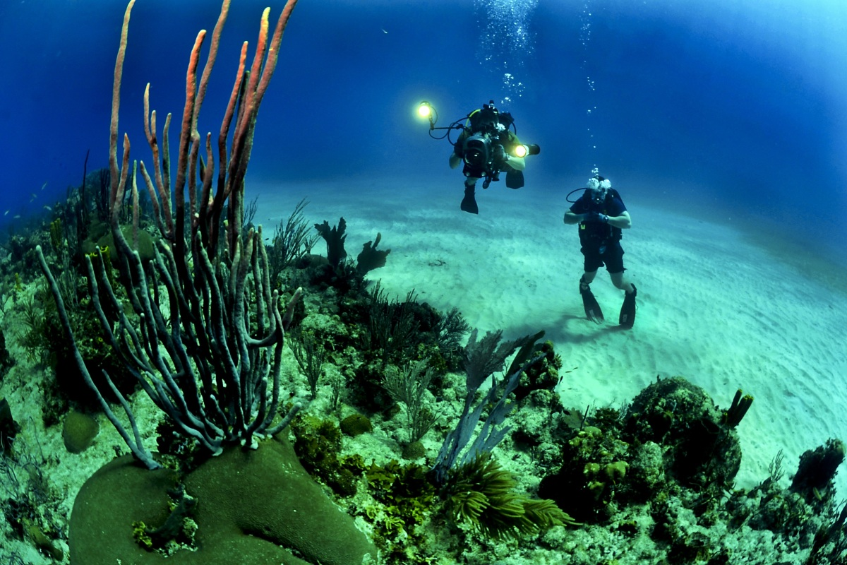 Scuba diving holidays in Spain